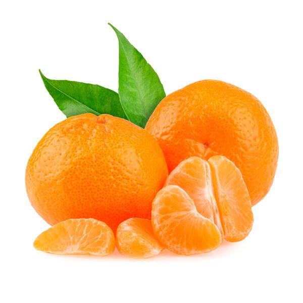 Mandarins nippy 39 s - Mandarina home online ...